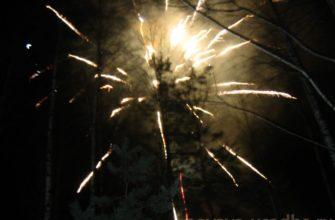 Празднование католического рождества в подмосковье