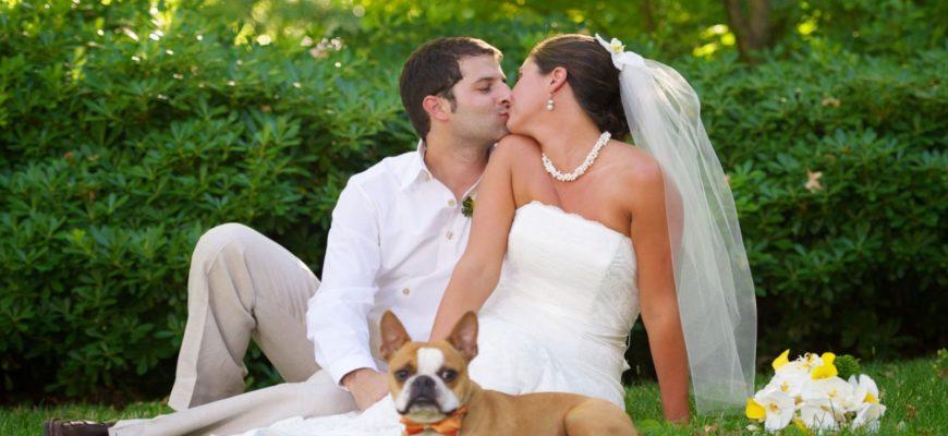 Отпраздновать свадьбу на природе
